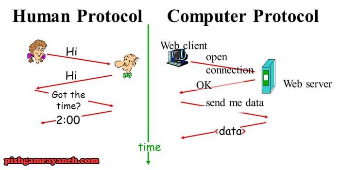 وظایف پروتکل چیست